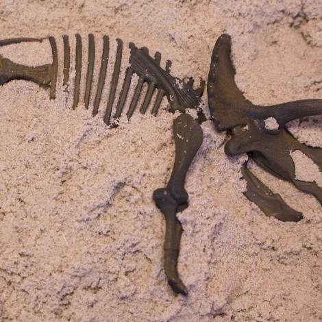 Набор раскопки динозавра Dino T-Ric  (арт. 150-112)
