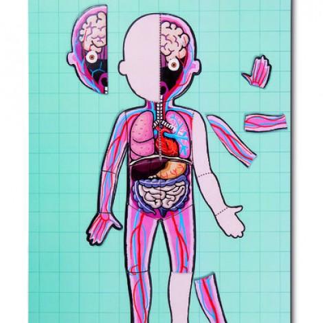 Игровой магнитный набор Janod Тело человека  (арт. J05491)